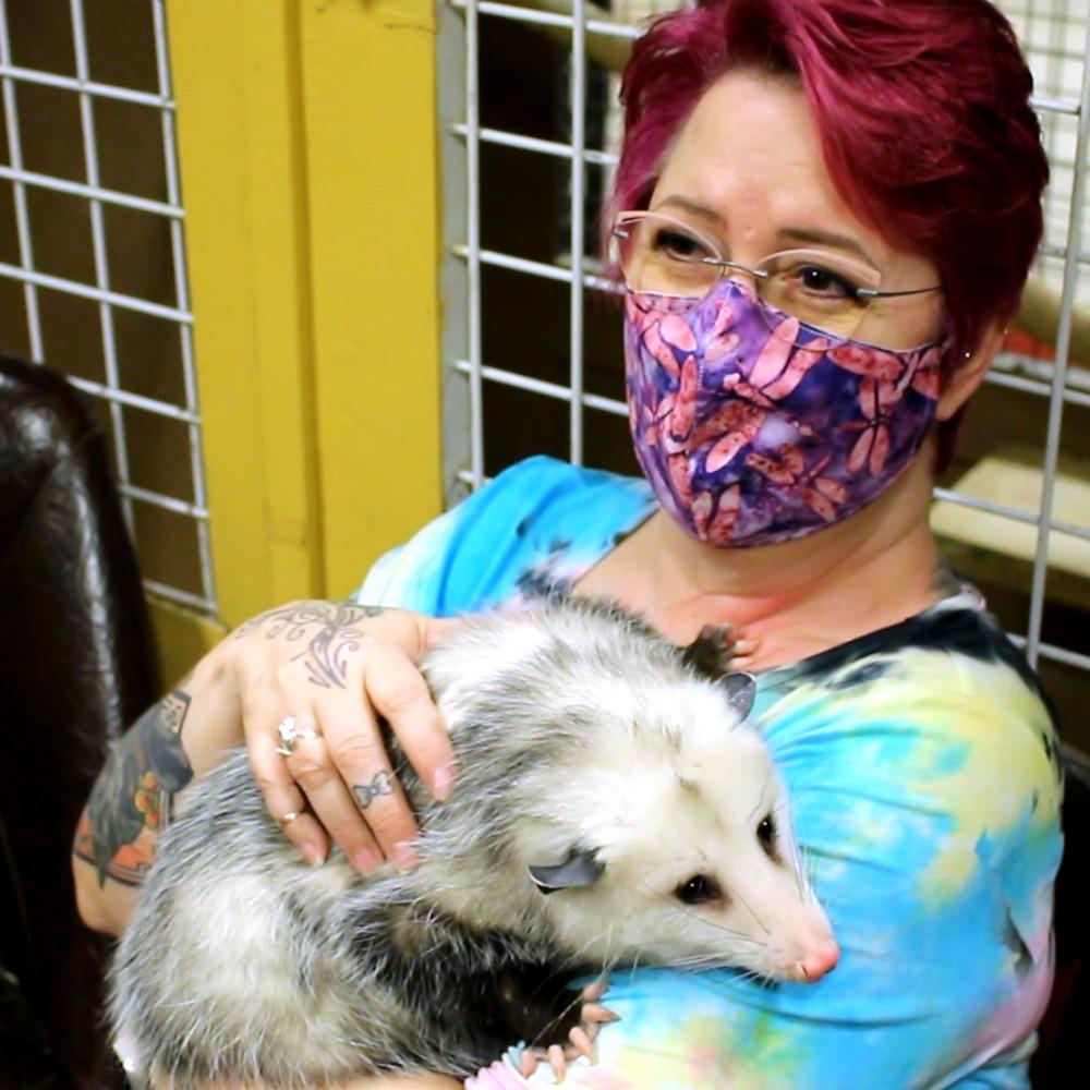 opossum-holding-square